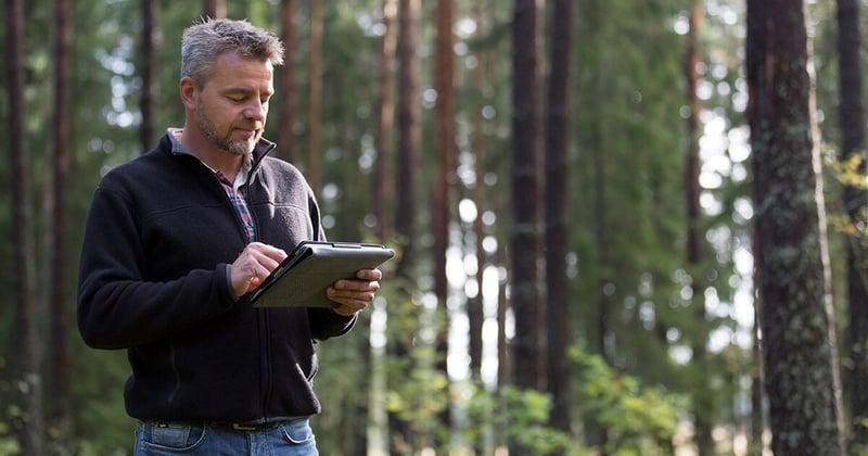 skog_1200x630